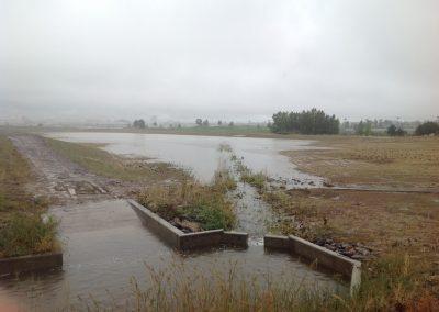 Regional Pond